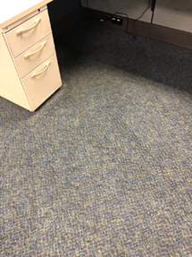 Carpet Care Stain Removal