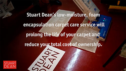 Stuart Dean Carpet Care Demonstration